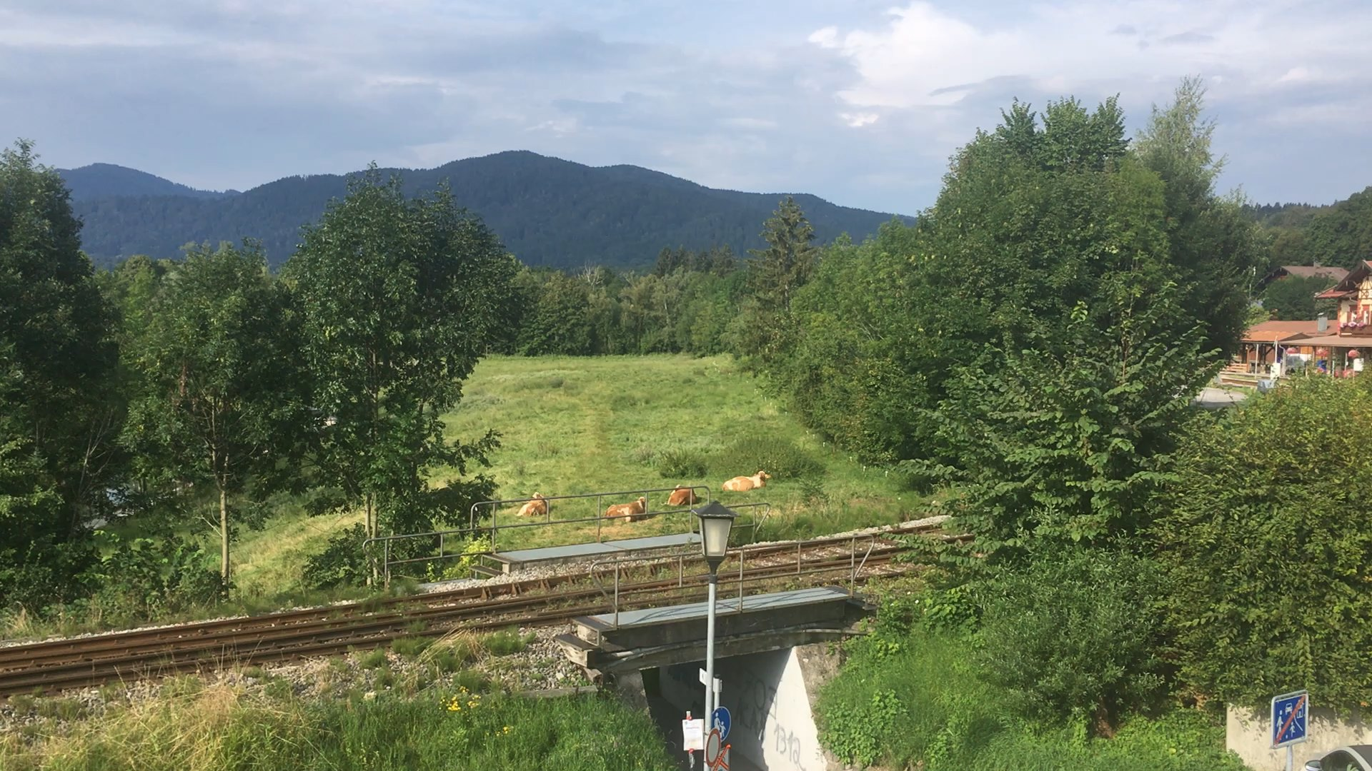 Bürgerinitiative LINT Züge